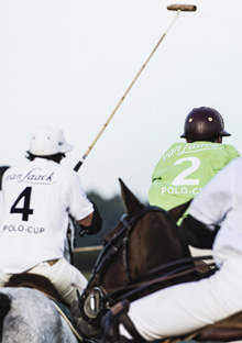 VanLaak Polo